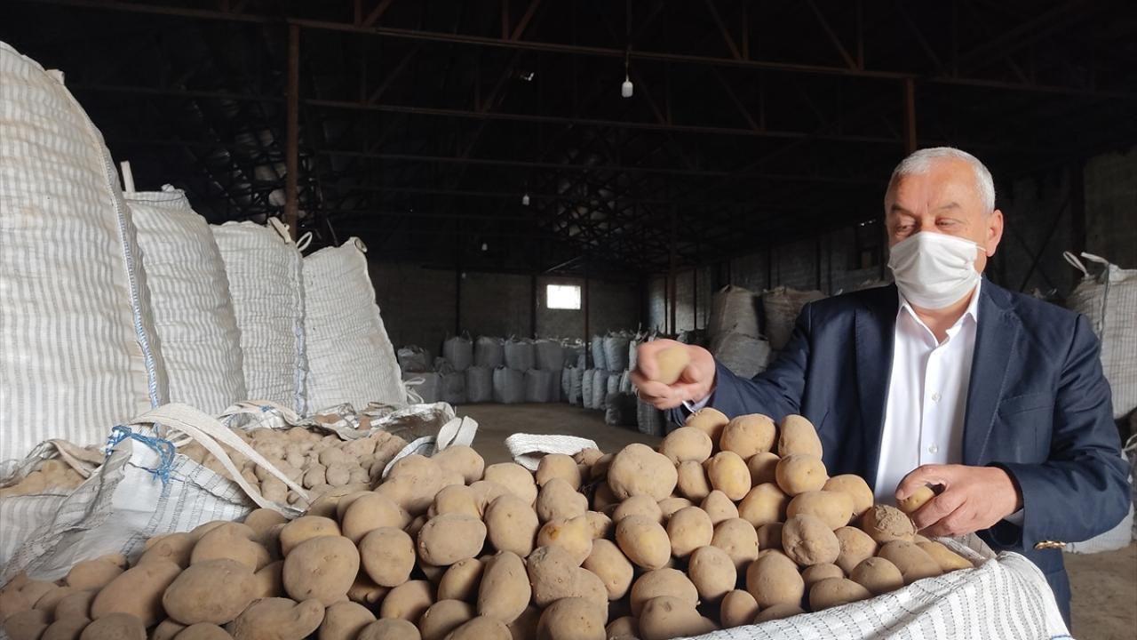 Cumhurbaşkanı Erdoğan'ın müjdesi Ahlatlı patates üreticilerini sevindirdi - Sayfa 1