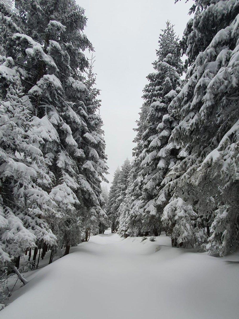 Düzce'de nisan ayında 120 santimetre kar - Sayfa 4