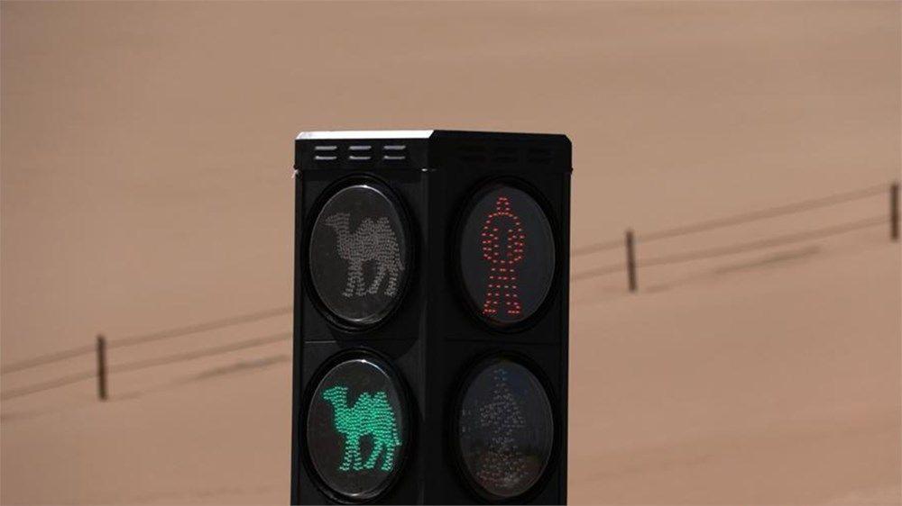 Develere özel trafik lambası - Sayfa 2