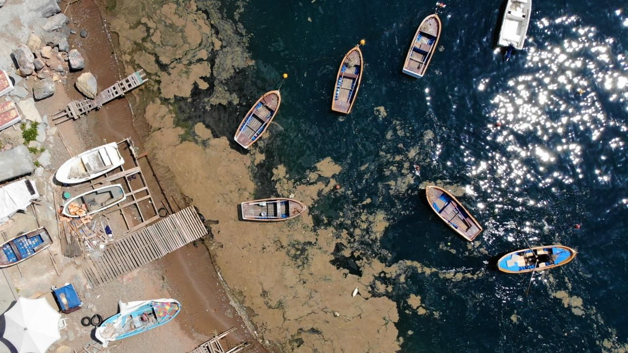 Balıkçılara zor anlar yaşatan tabaka 'doğa olayı' çıktı - Sayfa 1