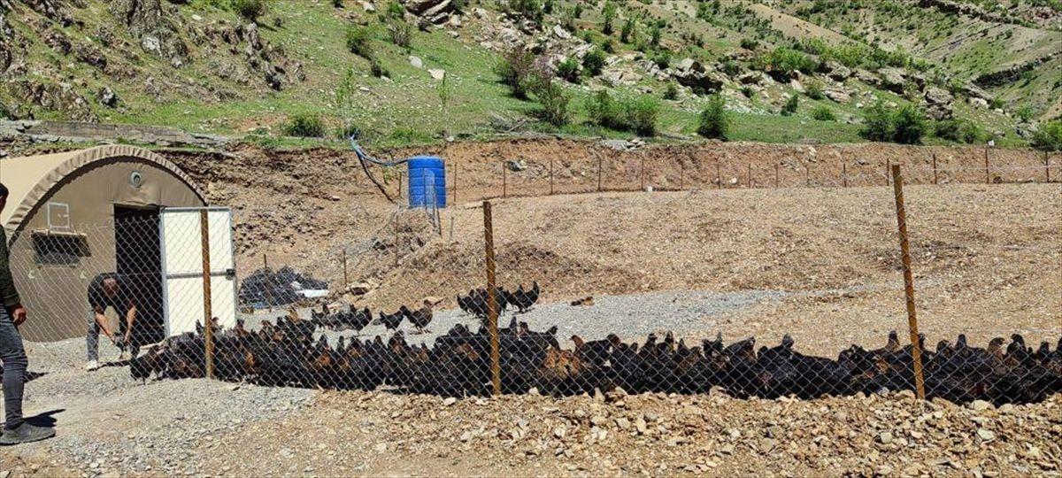 Bakan Soylu, Uludere'de hayata geçirilen projeleri paylaştı - Sayfa 1