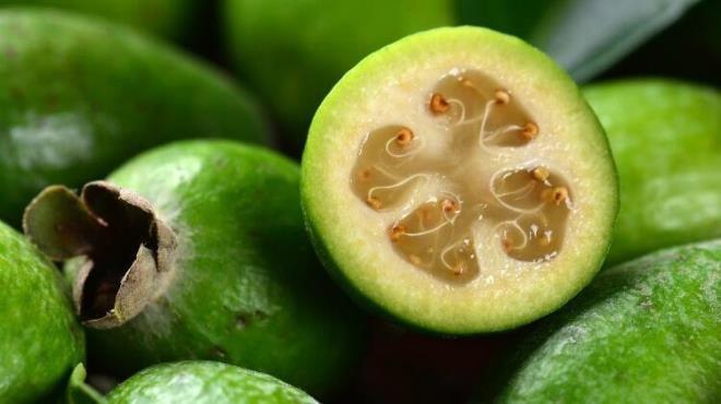 Bir ülkeyi ikiye bölen meyve: Feijoa - Sayfa 2