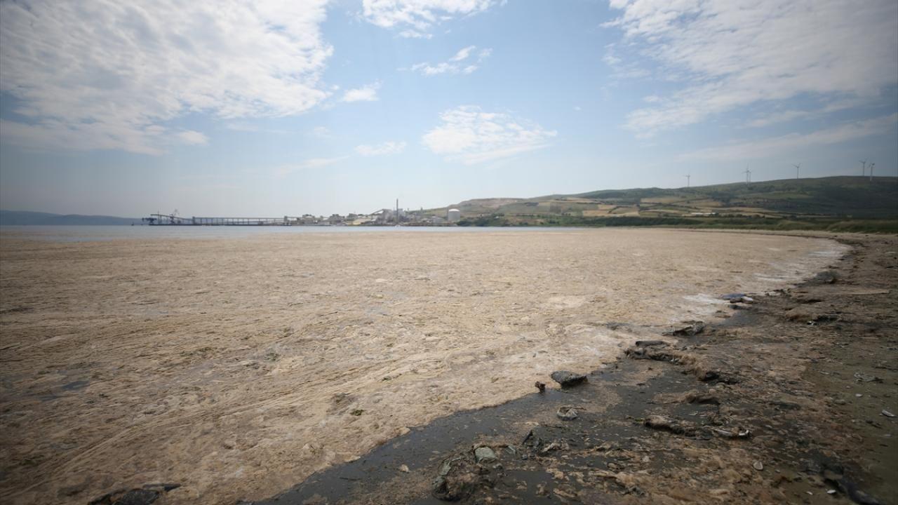 Erdek sahili müsilaja teslim: Deniz ve kara böyle bütünleşti - Sayfa 3