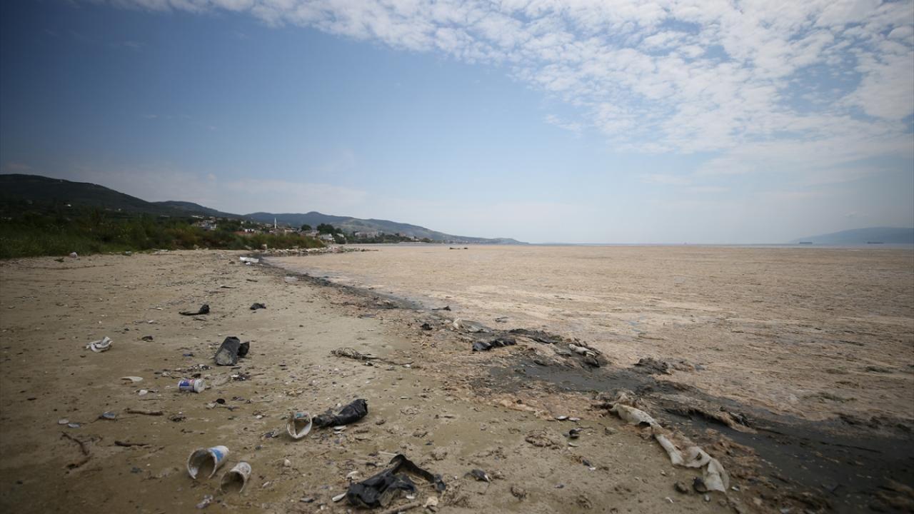 Erdek sahili müsilaja teslim: Deniz ve kara böyle bütünleşti - Sayfa 4
