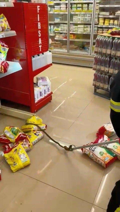 Alışveriş için gittikleri markette rafların arasından yılan çıktı - Sayfa 3