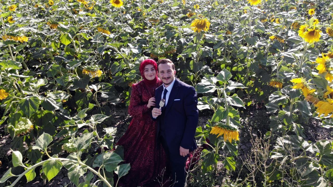 Ağrı'daki ayçiçeği tarlaları fotoğrafçılar için vazgeçilmez oldu - Sayfa 3