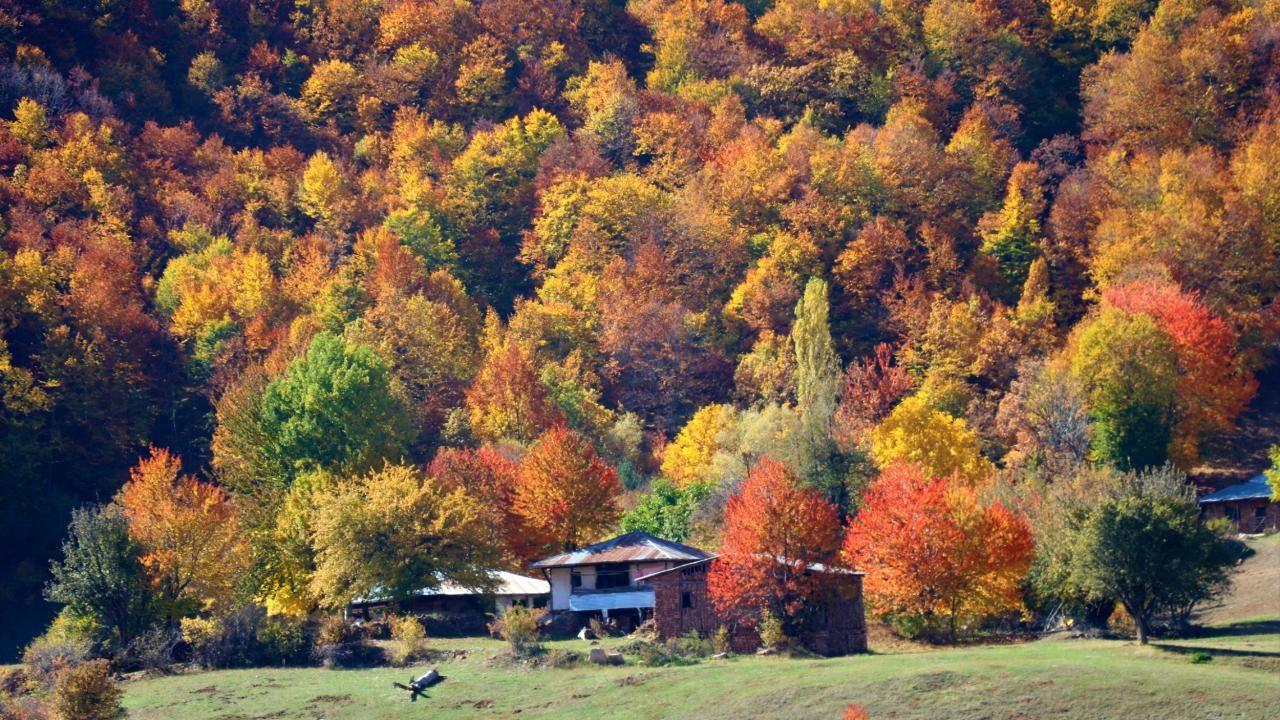 Dipsizgöl sonbahar güzelliği ile görenleri mest ediyor - Sayfa 3