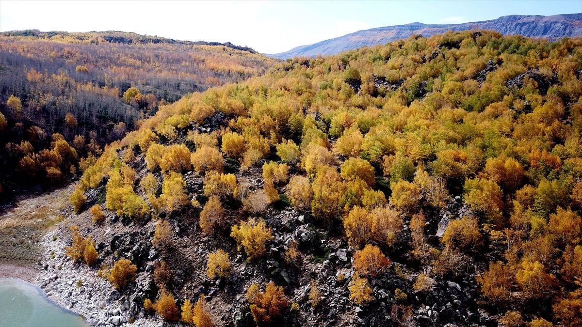 Nemrut Krater Gölü'nde sonbahar güzelliği - Sayfa 2