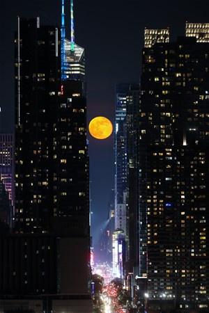New York`ta çekilen bu fotoğraflar görenleri büyüledi - Sayfa 1