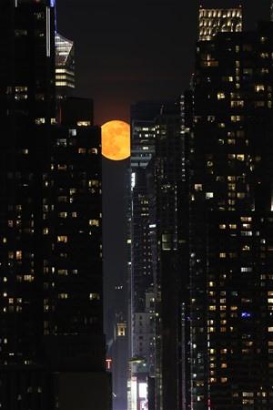 New York`ta çekilen bu fotoğraflar görenleri büyüledi - Sayfa 2