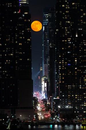 New York`ta çekilen bu fotoğraflar görenleri büyüledi - Sayfa 3