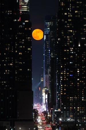 New York`ta çekilen bu fotoğraflar görenleri büyüledi - Sayfa 4