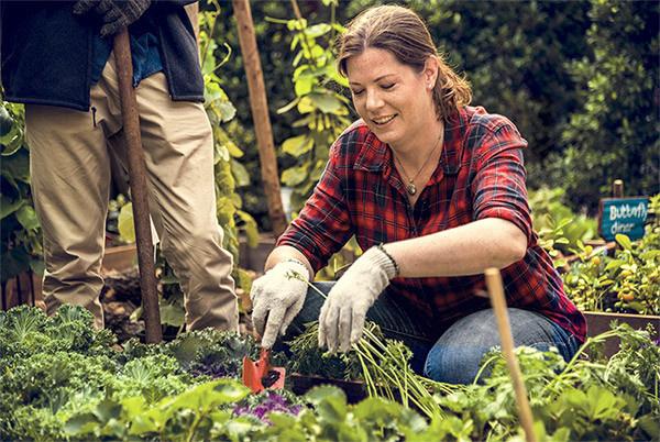 Araştırmalar bahçede yaşa diyor! - Sayfa 4