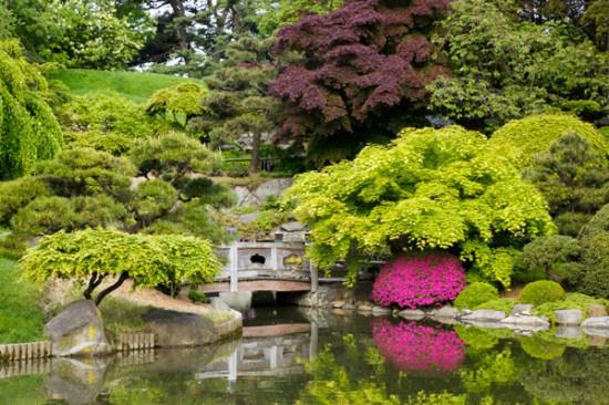 Dünya üzerindeki en iyi botanik bahçeler - Sayfa 4