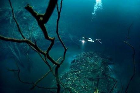 Denizin altındaki nehir - Sayfa 2