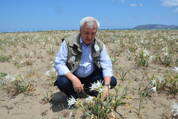 Kumda yetişiyor! Koparmanın cezası 60 bin lira - Sayfa 1