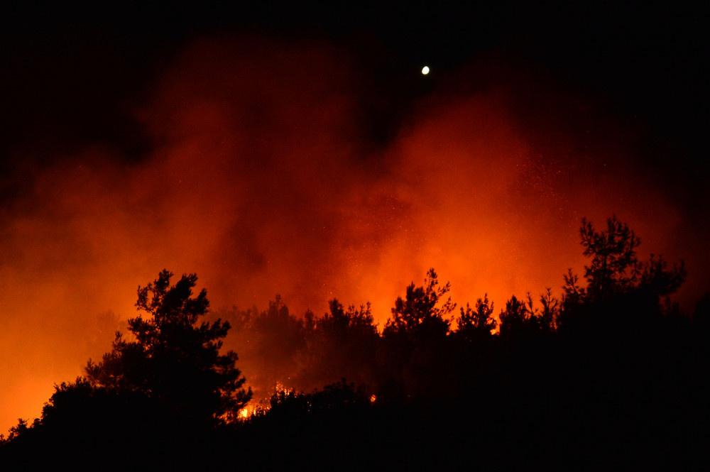 Tarihi Gelibolu Yarımadası'nda yangın - Sayfa 2