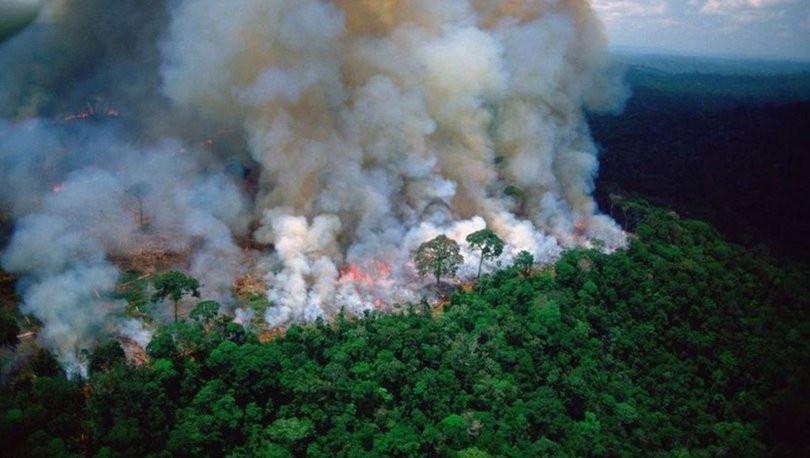 'Dünyanın akciğerleri' yanıyor - Sayfa 3
