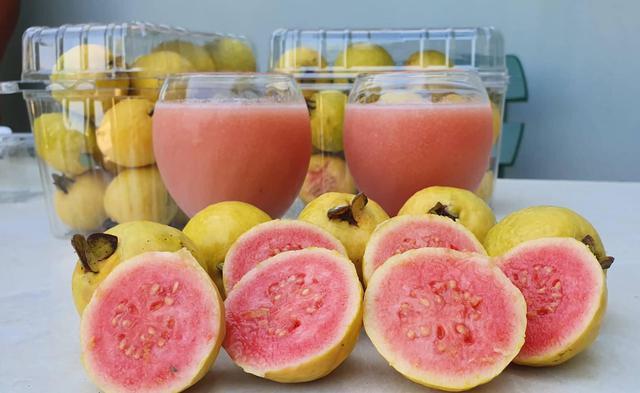 Silifke'de 'guava' hasadı başladı - Sayfa 4